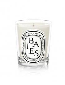 Candles online: Diptyque baies candle